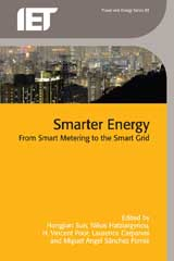 image of Smarter Energy: From Smart Metering to the Smart Grid